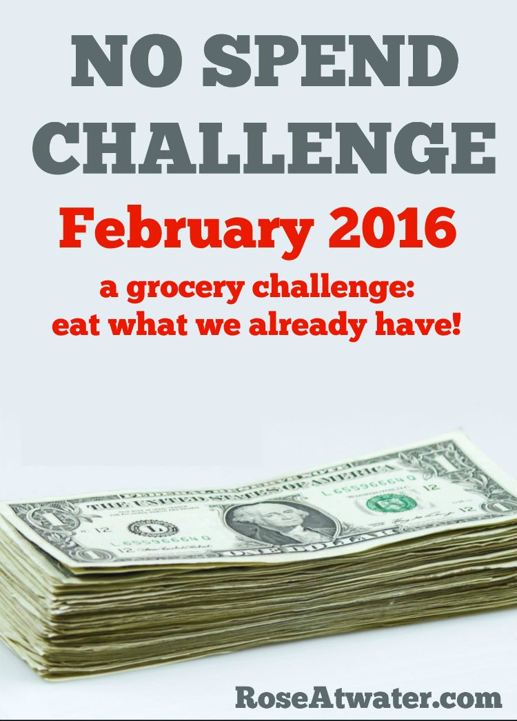 Grocery No-Spend Challenge February 2016 Summary