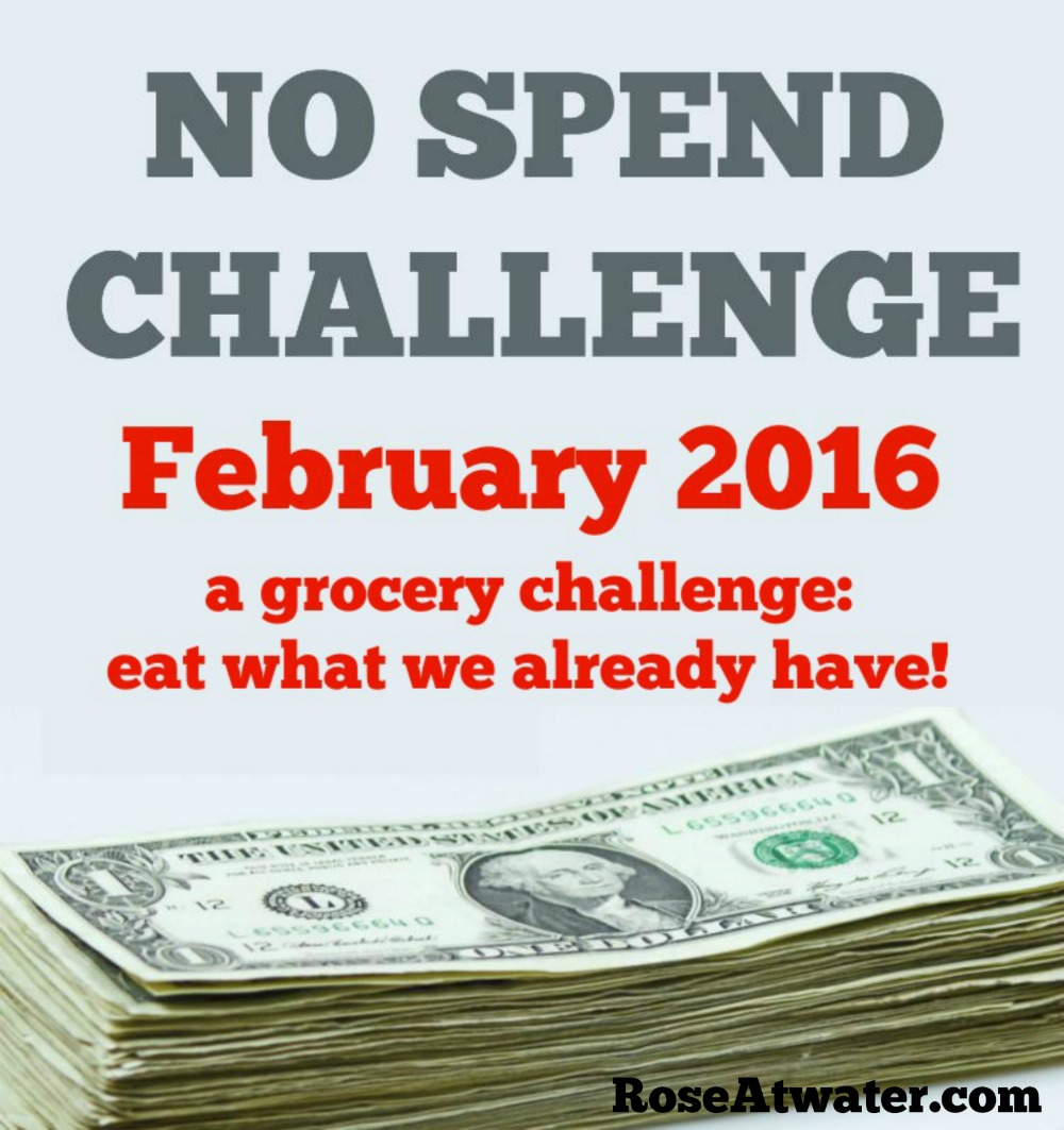 Grocery No-Spend Challenge February 2016 : Days 11-18