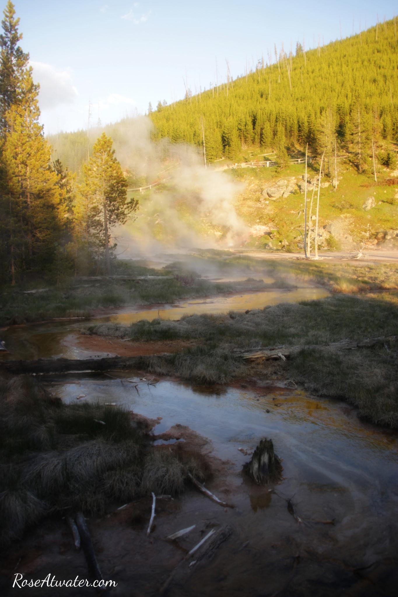 Road Trip 2015: Day 9 {Yellowstone, Old Faithful, Paint Pots & Wildlife!}