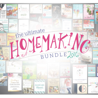Last Chance to Get $1,000+ Worth Of Resources for Just $29 (including a FREE Craftsy Class!)