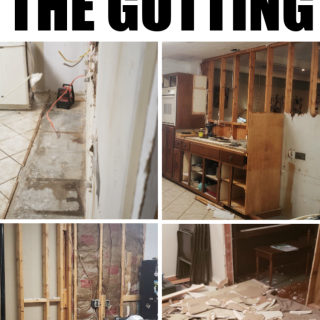 Kitchen Remodel : The Gutting